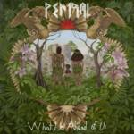 Pentral premieres new video for No Real Colour In Souls
