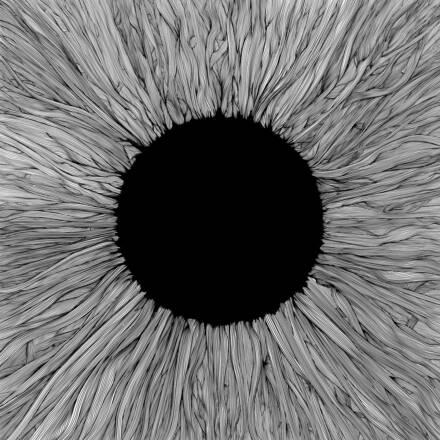 VOLA – Witness
